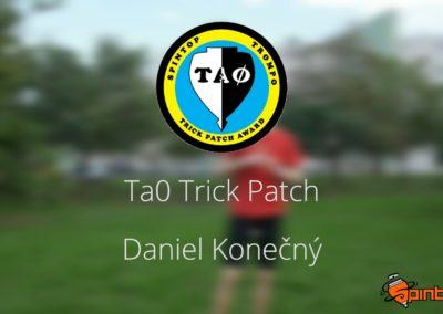 Ta0's patch black belt video application by D. Konečný