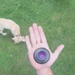 How to balance a spin top on your hand by Dylan K.