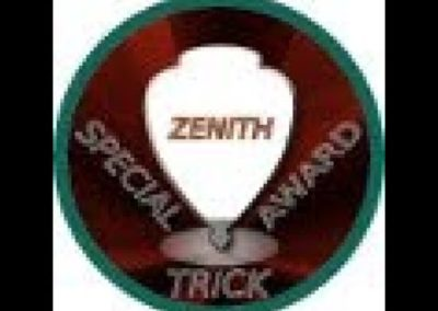 Zenith award Patch by Texture